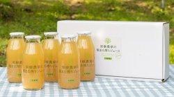 画像3: 果樹農家の梨まる搾りジュースギフト  180ml5本組 夏ギフト・お中元・のし対応